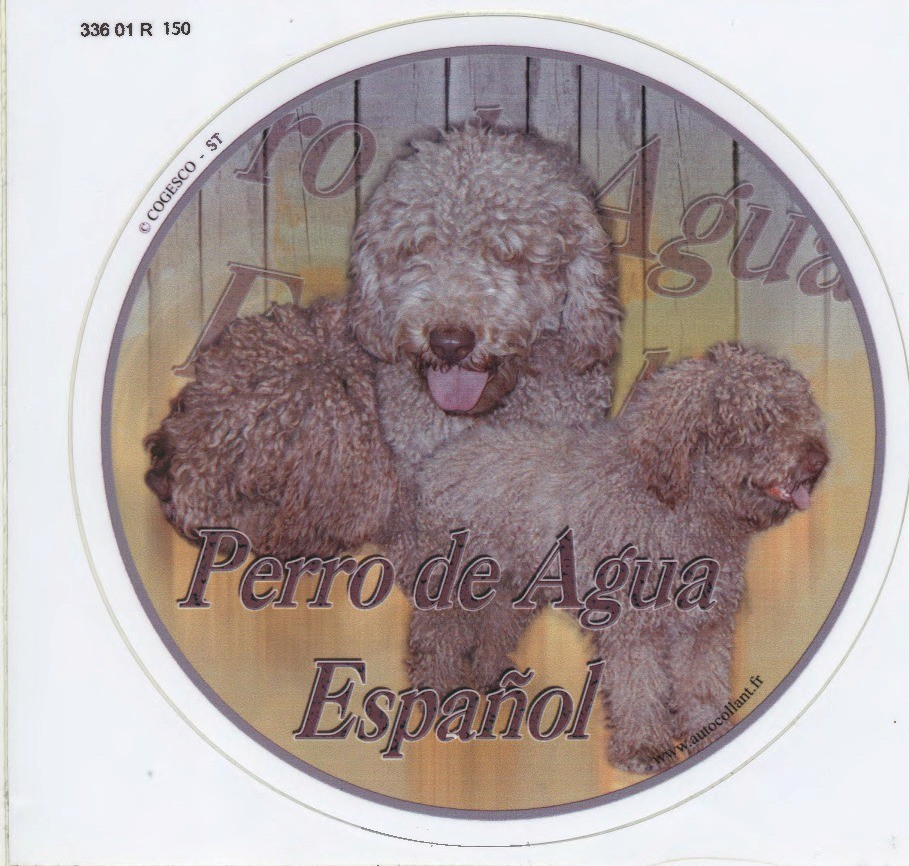 profiler spansk svälja