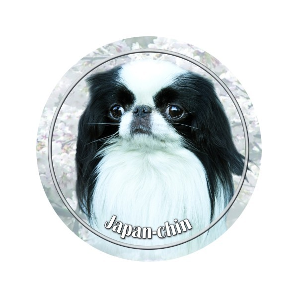 japanese chin 3d dekal nettbutikken med det beste av det beste til hund og katt. Black Bedroom Furniture Sets. Home Design Ideas