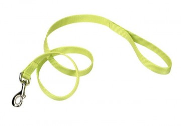 Nylon Leash Lime Medium