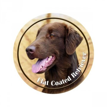 Flat Coated Retriever 3D Dekal