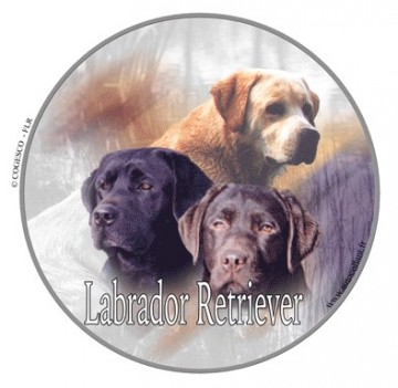 Labrador Retriever Dekal