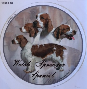Welsh Springer Spaniel Dekal