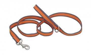 Pet Attire® Pro Leash-Bright Orange