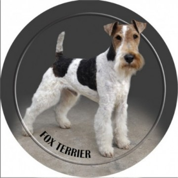 Fox Terrier 3D Dekal 1