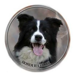 Border Collie 3D Dekal