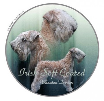 Irish Soft Coated Wheaten Terrier Dekal