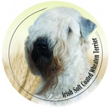 Irish Soft Coated Wheaten Terrier 3D Dekal
