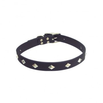 Circle T Collar With Studs
