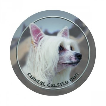 Chinese Crested 3D Dekal