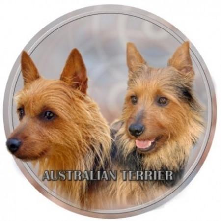 Australsk Terrier