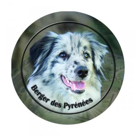 Pyreneisk Gjeterhund