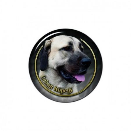 Anatolsk Gjeterhund