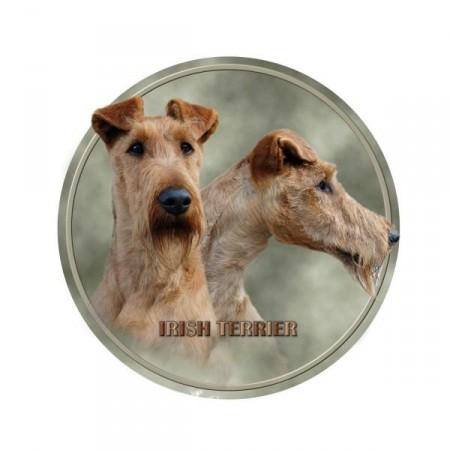 Irsk Terrier